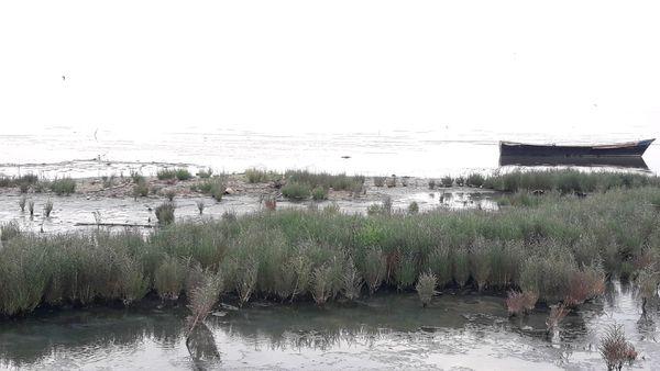 حرفدرمانی مسئولان برای خلیج گرگان آب نمیشود