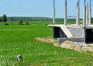 کاهش تغییر کاربری اراضی کشاورزی در گلستان