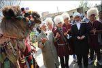 نقش زیبای ترکمنها بر قالی بیهمتای رمضان