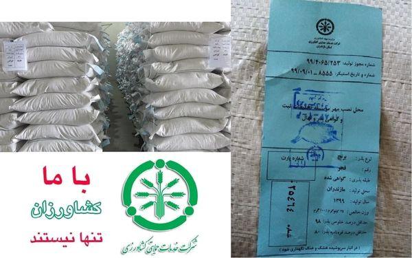 برنامه توزیع78 تن بذر برنج در گلستان