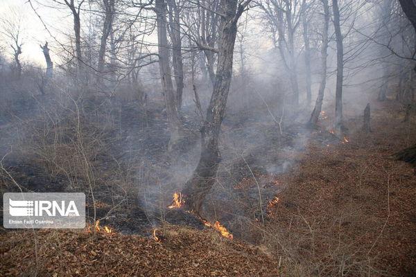 پارسال ۱۲میلیارد ریال برای مقابله با آتشسوزی پارک ملی گلستان هزینه شد