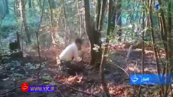 دستهایی که تیشه به ریشه جنگلهای هیرکانی میزند+فیلم