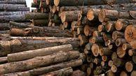 مبارزه با قاچاق چوب و زمینخواری اولویت مهم پلیس امنیت اقتصادی در گلستان/قاچاق چوب زیر سایه خلأقانونی