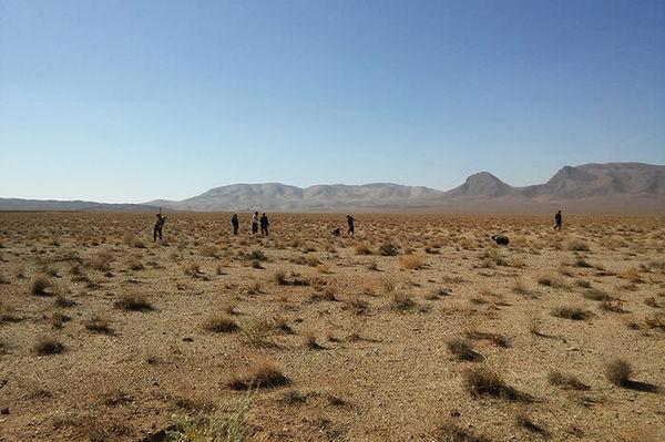 رنج خشکسالی بر زندگی و تولیدات دامی عشایر گلستان