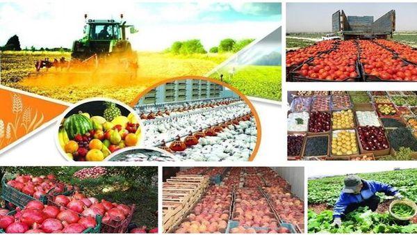 توسعه گلستان با نگاه ویژه به بخش کشاورزی/ چتر حمایتی گسترده شود