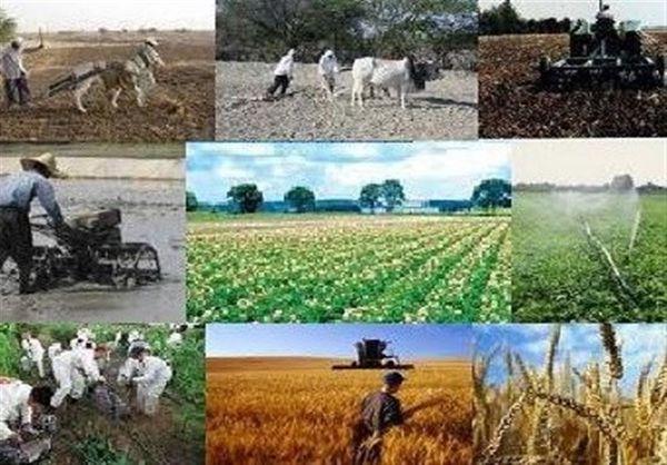 اجرای بیش از ۱۶۰ طرح اشتغال روستایی در استان گلستان به تصویب رسید