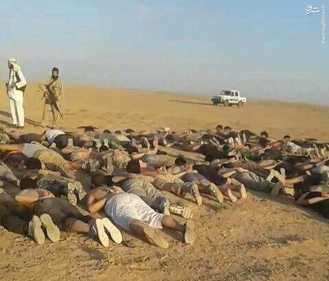 اسارت 40 داعشی بدست القاعده در حماه+عکس