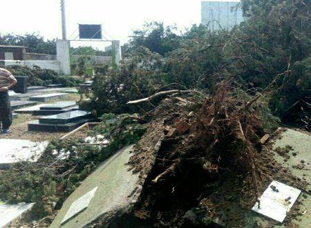 نبش قبر به علت وقوع طوفان +عکس