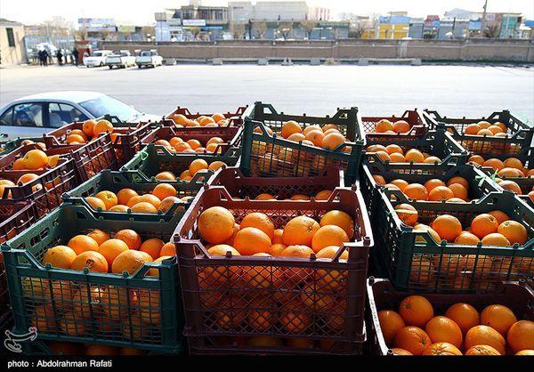 ۵۴۰ تن میوه در استان گلستان توزیع شد