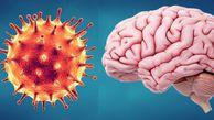 یک سوم مبتلایان به کرونا تا ۶ ماه دچار اختلالات عصبی میشوند