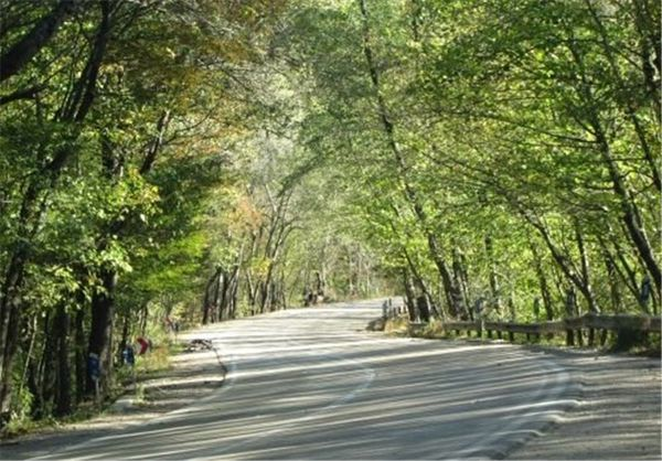 سایت مقابله با بحران در پارک ملی گلستان بلاتکلیف مانده است