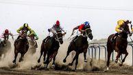 مسابقات سوارکاری کورس تابستانه بندرترکمن به تعویق افتاد