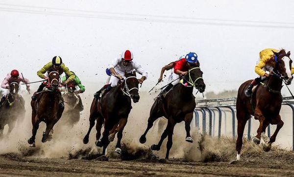 پایان تاخت و تاز اسبها در کورس سوارکاری آق قلا