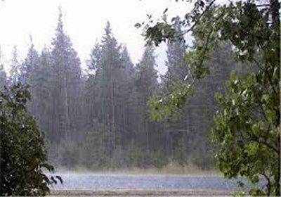 باران در گلستان توام با کاهش 16 درجهای دما/ احتمال وزش باد بالای 80 کیلومتر بر ساعت
