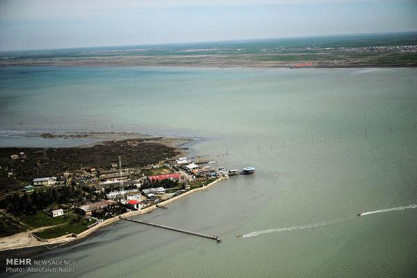 نگران کاهش اکسیژن آبِ خلیج گرگان هستیم/ هشدار نسبت به مرگومیر آبزیان و پرندگان