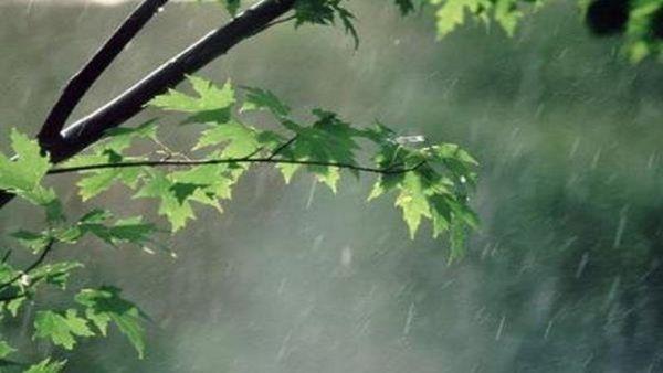 کاهش ۳۰ درصدی بارندگی در گلستان