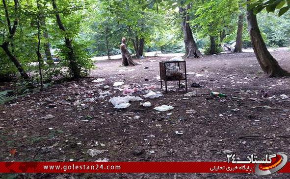 پارک ملی گلستان8