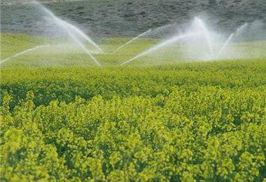کمک بلاعوض ۴۰ میلیون تومانی برای آبیاری قطرهای در باغهای گلستان