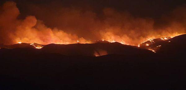 آتش سوزی در حریم زمین کشاورزی و منابع طبیعی آزادشهر مهار شد.
