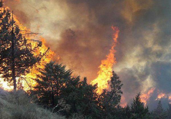 مهار 2مورد آتش سوزی حاشیه و داخل پارک ملی گلستان