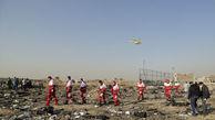 فیلم/ پرچمی که در حادثه سقوط هواپیما سالم ماند